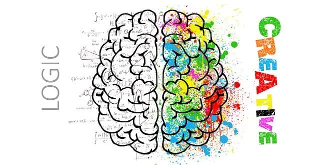 breindominansie toets